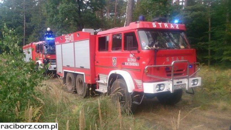 Pożar lasu w Nędzy. W gaszeniu pomógł samolot