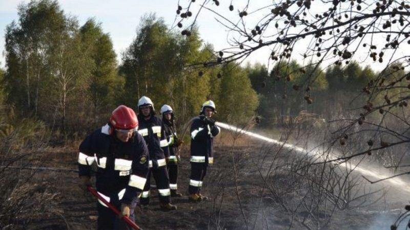 Pożar nieużytków pomiędzy Raszczycami i Babicami